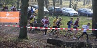 runners racing at Den Hague