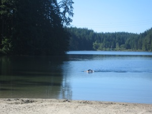 20 minutes later, as I was preparing to ride back, I saw a triathlete finishing his swim.