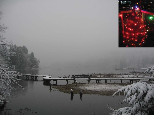 Christmas scene from Port Moody