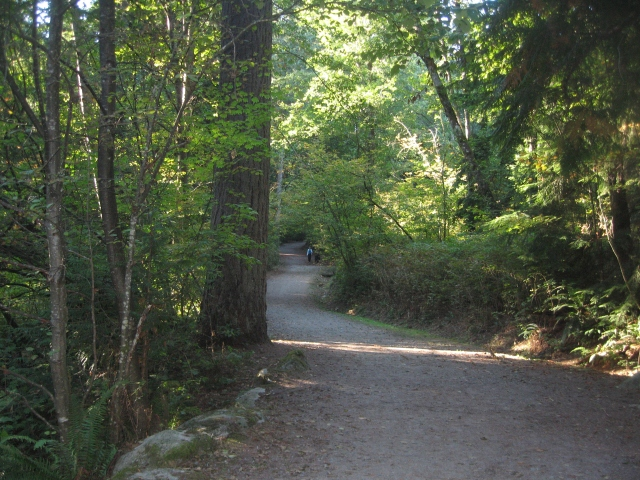 Mundy Park trail