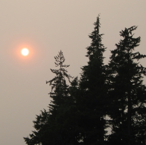 red sun in the evening at Sasamat Lake